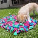 Dog and snuffle mat
