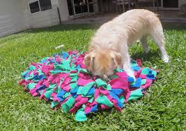 Ever heard of a Snuffle Mat?